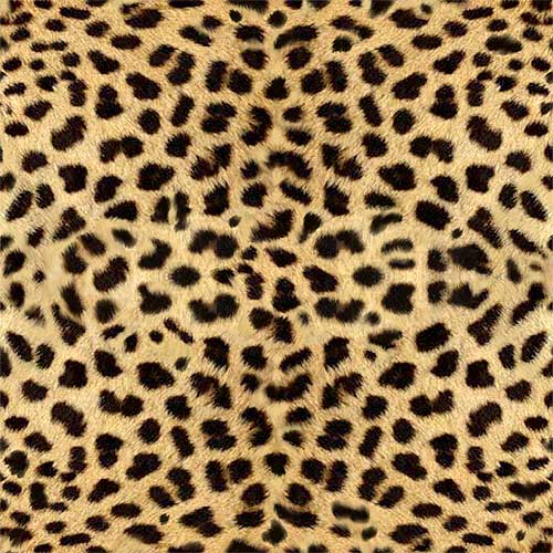 Name: animal-fur-skin_cheetha
