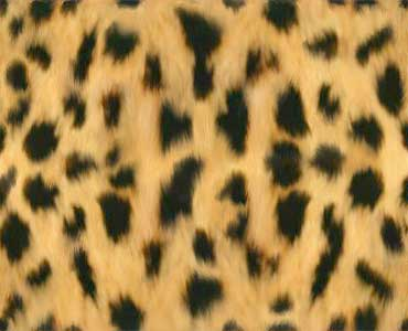 Name: animal-skin_jaguar