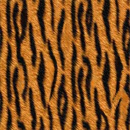 Name: brown-orange-animal-fur-skin_tiger