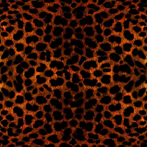 Name: dark-animal-fur-skin_cheetha