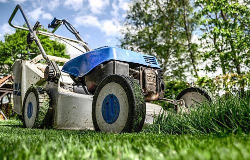 Kan man låta ungar jobba i trädgården?