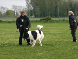 På brukshundsklubben vår 2010