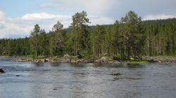 Här är vyn om man tittar uppströms hängbron vid Hästskoforsen. En del föredrog denna del av älven, men vi fick största huggen nedströms.... alltså bara chansningeller vilken dagsform fisken är i.....